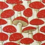 mushroom1024