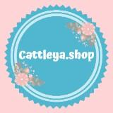 cattleya.shop