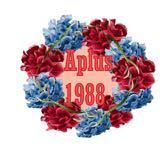 aplus1988