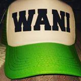 wanihashim88