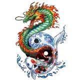 dragonfishteam