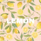 lemon.boutique