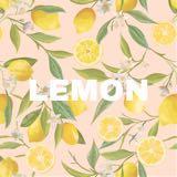 lemon.boutique