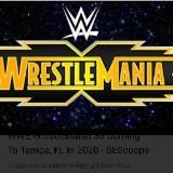 wrestlemaniawong8299