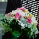 pinkshoop