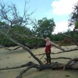 mia_iema97