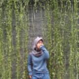 arifu_preloved