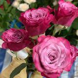 blossomhappy