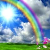 rainbow668
