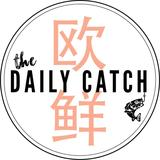 thedailycatch
