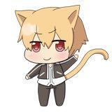 cat11049