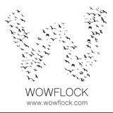 wowflock