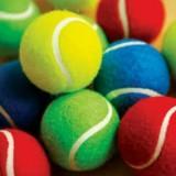 tenniscoachpro