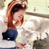 sophie_wang107