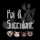 peib_succulent