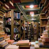 thebookcollectorshop