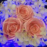 wood_florist