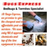 bugs_express