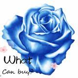 whatcanbuy