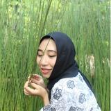 fisaifuddin_