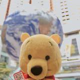 bear_diaries