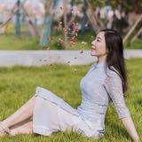 ynchao