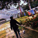 77_chii