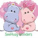 seehuay_wonders