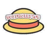 toys_hobbyist