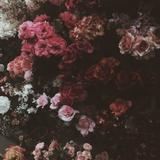 flowerpower97