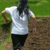 miss_xl
