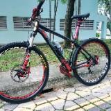 blackrider1982