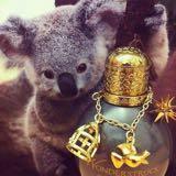 cute_koala