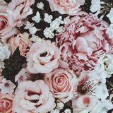 love_beauty_sell