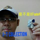 jeffrythamcollection