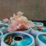ann0608ching
