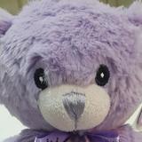 beary.cute