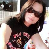 tiger495649