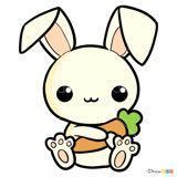 rabbit64