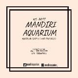 mandiriaquarium19