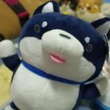 xinyi_329418