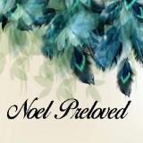 noel.preloved