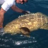 fishing_life