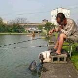 chiang5_chiang5