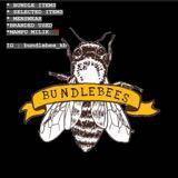bundlebee.garage
