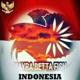 kayrabettafish
