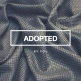 adoptedby.you